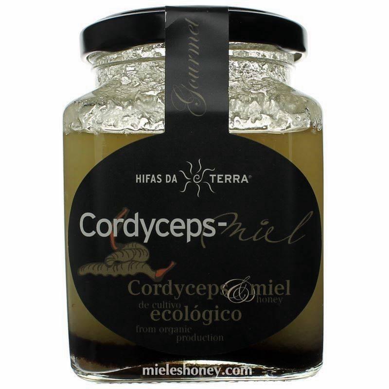Hifas da Terra - Cordyceps-Miel - Miel de Acacia con Cordyceps en polvo_1