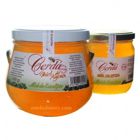 Pure Eucalyptus Honey - (Spain)