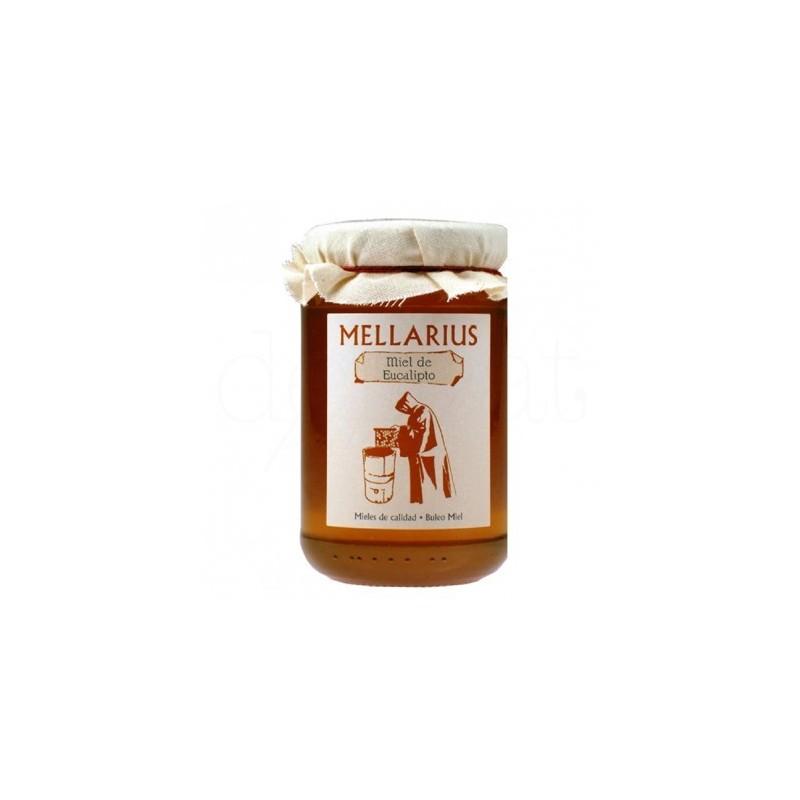 Miel de abejas de eucalipto