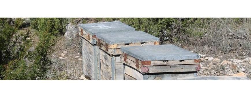 Comprar Miel CRUDA de ESPAÑA - De apicultor artesano